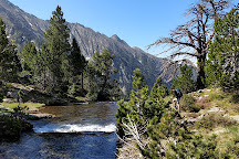 Parc Natural de l'Alt Pirineu, Llavorsi, Spain