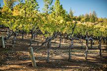 Langtry Estate & Vineyards, Middletown, United States
