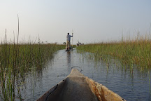 Okavango River, Maun, Botswana