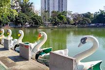 Lago de Vila Galvao, Guarulhos, Brazil