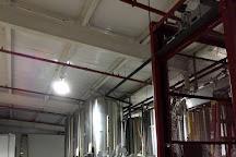 Ozark Beer Co., Rogers, United States