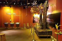 Begich Boggs Visitor Center, Girdwood, United States