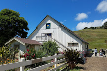 Harley Farms Goat Dairy, Pescadero, United States