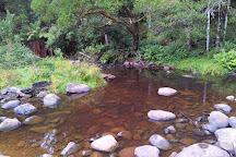 Beauchamp Falls, Beech Forest, Australia