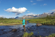 Denali Fly Fishing Guides, Cantwell, United States