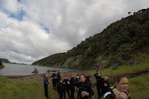 Northland Dive, Whangaruru, New Zealand