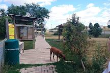 Totoredaca Leash-Free Dog Park, Mississauga, Canada
