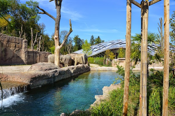 attractions, amdenlodge - bienenheim naturhostel - amden - switzerland, Garten und erstellen