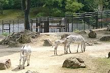 Ishikawa Zoo, Nomi, Japan
