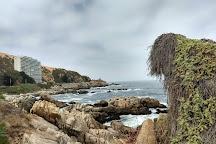 Reñaca, Vina del Mar, Chile