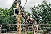 Roosevelt Park Zoo, Minot, United States