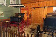 Nevada County Narrow Gauge Railroad Museum, Nevada City, United States