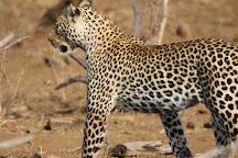 Kurt Safari, Kruger National Park, South Africa