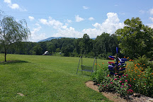 12 Spies Vineyards and Farm, Rabun Gap, United States