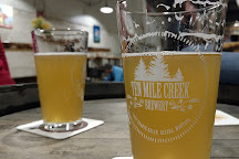 Ten Mile Creek Brewery, Helena, United States