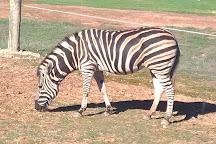 Monarto Zoo, Monarto, Australia