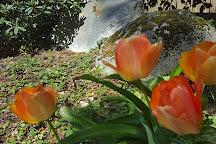 Big Rock Garden, Bellingham, United States