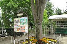 Kawaguchiko Music Forest Museum, Fujikawaguchiko-machi, Japan