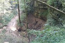Cedar Sink Trail, Mammoth Cave National Park, United States