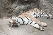 Nihondaira Zoo, Shizuoka, Japan