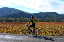 Wine Country Bikes, Healdsburg, United States