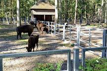 Animal Farm, Goluchow, Poland