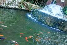Parque Santander, Bucaramanga, Colombia