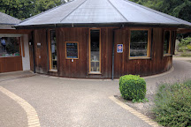 Thetford Forest Park, East Anglia, United Kingdom