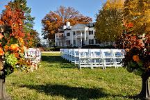 Keswick Vineyards, Keswick, United States