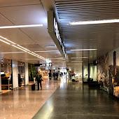 Train Station  Fiumicino Aeroporto