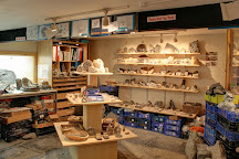 The Fossil Workshop, Lyme Regis, United Kingdom