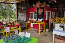 Fruit Acres Farm Market and U-Pick, Coloma, United States
