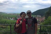 Alsace Original Experiences, Colmar, France