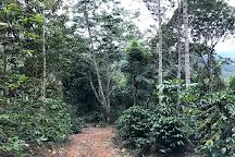 Spirit Mountain, Jarabacoa, Dominican Republic