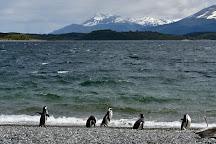 Isla Martillo, Ushuaia, Argentina