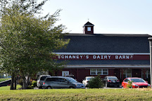 Chaney's Dairy Barn, Bowling Green, United States