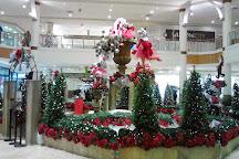 Bramalea City Centre, Brampton, Canada