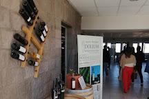 Dolium Winery, Agrelo, Argentina
