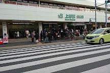Tokyo Bunka Kaikan, Uenokoen, Japan