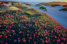 Wild Island Tasmania, Hobart, Australia