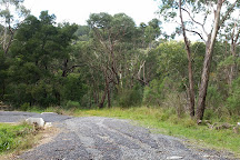 Baluk Willam Nature Conservation Reserve, Belgrave, Australia
