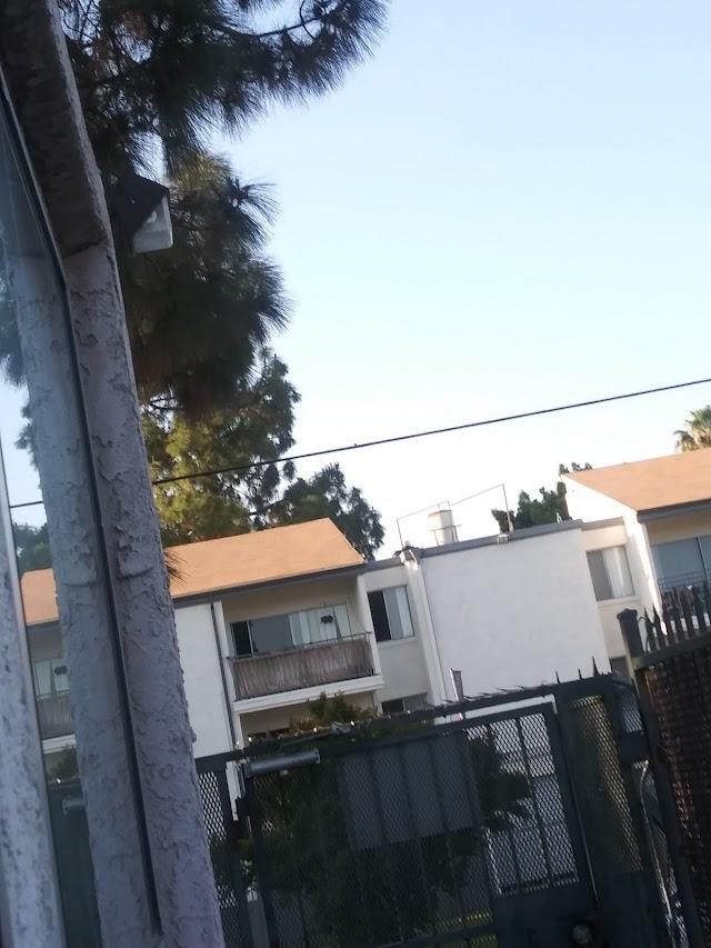 Tarzana Terrace
