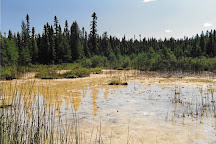 Wagner Natural Area, Spruce Grove, Canada