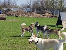 Barklay Park Dog Day Care Centre