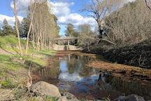 Spring Lake Park, Santa Rosa, United States