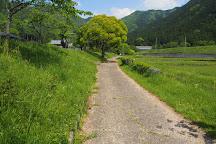 Miwakare Park, Tamba, Japan