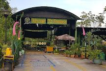 Bollywood Veggies, Singapore, Singapore