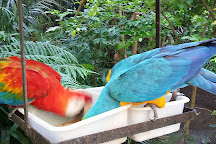 Parque Zoobotanico Arruda Camara, Joao Pessoa, Brazil