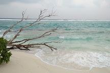 Dive Different Fulidhoo, Fulidhoo, Maldives