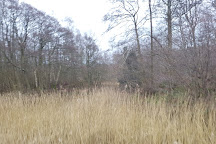 Sevenoaks Wildlife Reserve, Sevenoaks, United Kingdom